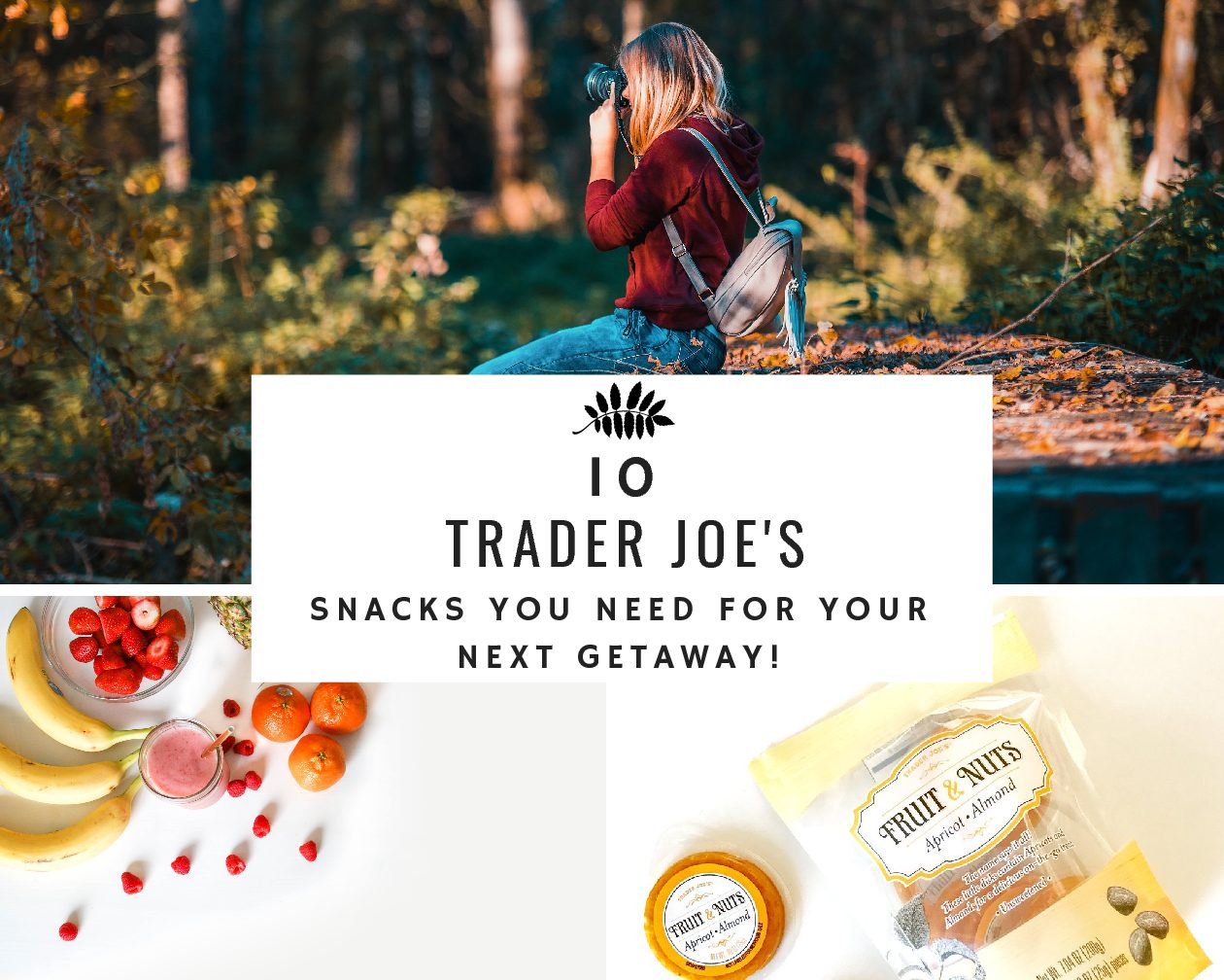 Trader Joe's: 10 Healthy Travel Snacks you Need for your Next Trip!